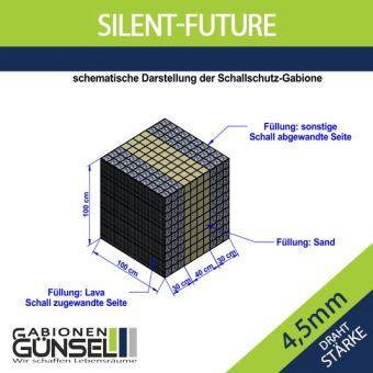 Silent Future  1 x 1 x 1