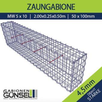 Zaungabione 200 x 25 x 50 Typ A