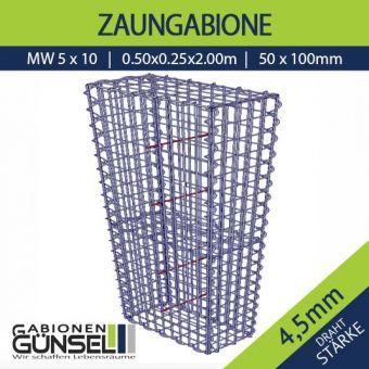 Zaungabione 50 x 25 x 200